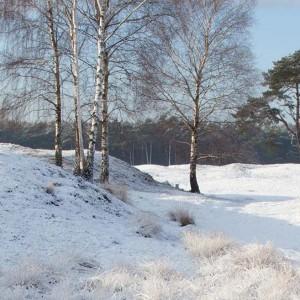 Slider_Winter_Hintergrund2
