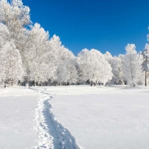 Slider_Winter_hintergrund1